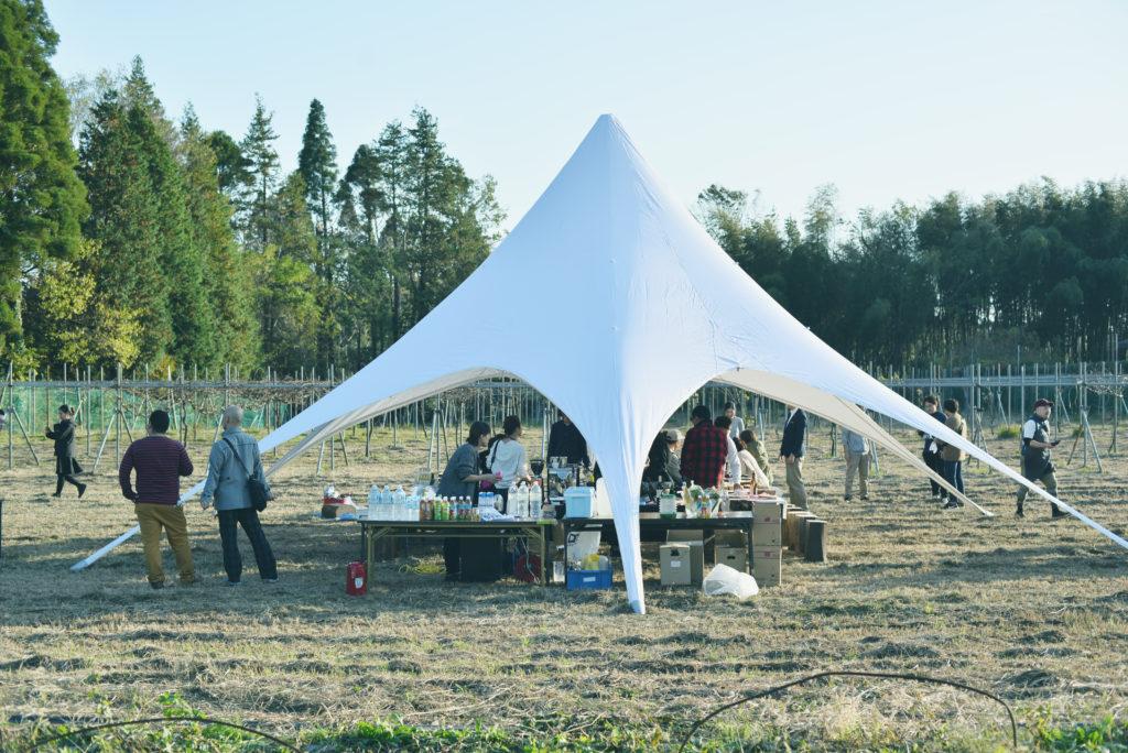 ブドウ園に設置された大きなテント